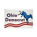 Ohio Democrat Magnet
