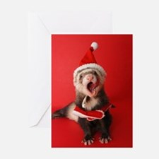 Cute Ferret rescues Greeting Cards (Pk of 20)