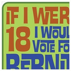 If I Were 18 I'd Vote for Bernie Poster