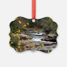 Cute Blackwater Ornament