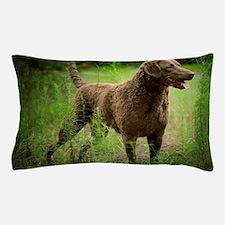 Cool Chesapeake retriever Pillow Case