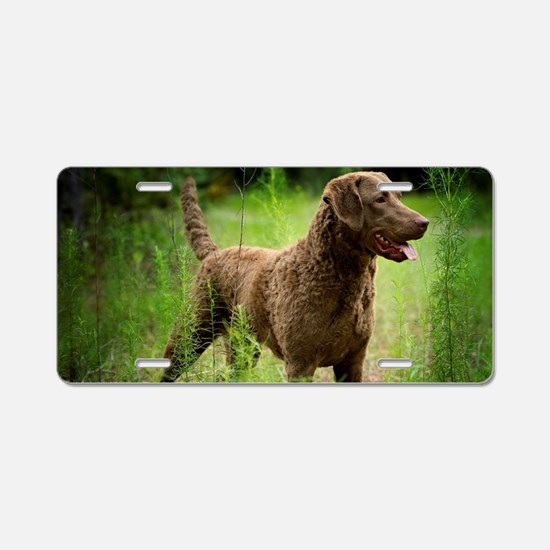 Unique Chesapeake bay retriever Aluminum License Plate