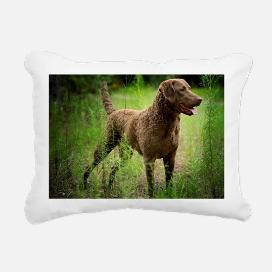 Unique Chesapeake bay Rectangular Canvas Pillow