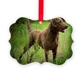 Chesapeake bay retriever christmas Picture Frame Ornaments