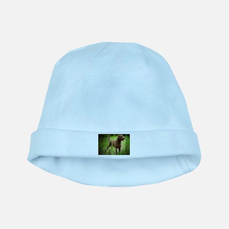 Cute Chesapeake bay retriever baby hat