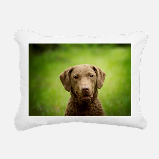 Cool Chesapeake bay Rectangular Canvas Pillow