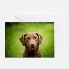 Cool Chesapeake bay Greeting Card