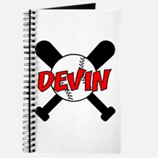 Devin Baseball Journal