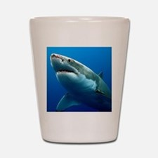 GREAT WHITE SHARK 3 Shot Glass