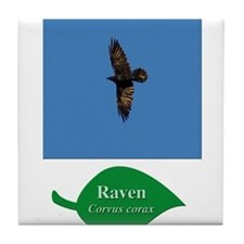 Raven in Flight Tile Coaster