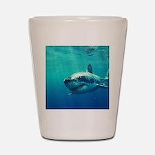GREAT WHITE SHARK 1 Shot Glass