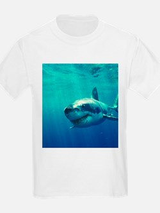 GREAT WHITE SHARK 1 T-Shirt