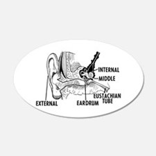 Ear Diagram Wall Decal