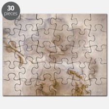 A Letter From Yesterday Puzzle
