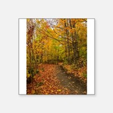 "Autumn Walk Square Sticker 3"" x 3"""