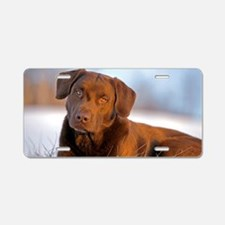 Cute Labrador playing Aluminum License Plate