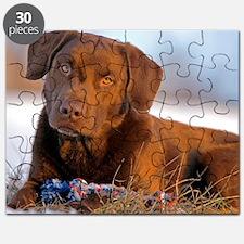 Cute Labrador puzzle Puzzle