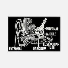 Ear Diagram Rectangle Magnet