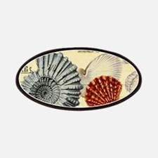 elegant paris beach seashells Patch