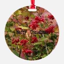 Cool Holly leaves Ornament