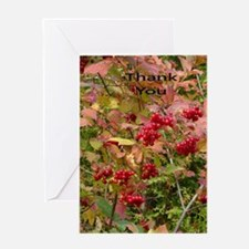 Berries and autumn Greeting Cards