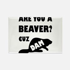 Are You A Beaver? Cuz Dam! Magnets