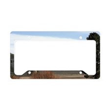 Frenchmans License Plate Holder