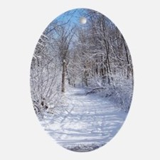 Snow Trail Scenery Oval Ornament