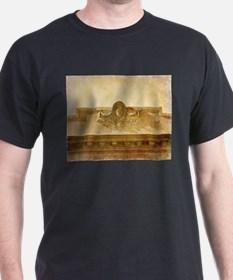 Unique Victorian buildings T-Shirt