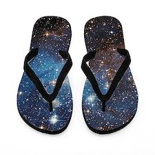 LH_95 Flip Flops