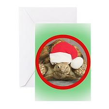 Unique Vet Greeting Cards (Pk of 20)