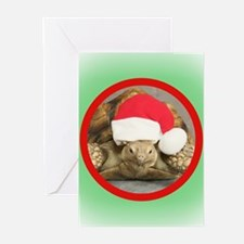 Unique Christmas veterinary Greeting Cards (Pk of 20)