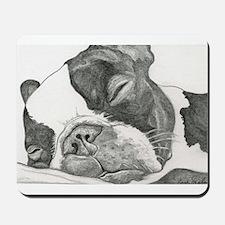 boston graphite.jpg Mousepad