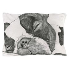 boston graphite.jpg Pillow Case