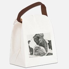 boston graphite.jpg Canvas Lunch Bag