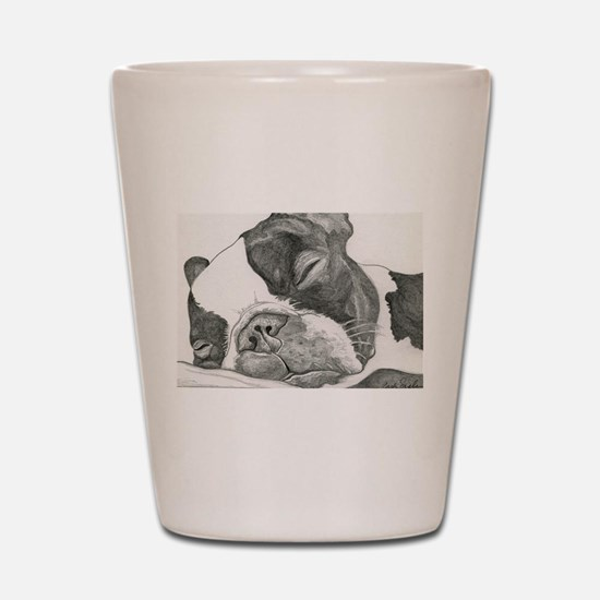 boston graphite.jpg Shot Glass