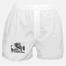 boston graphite.jpg Boxer Shorts
