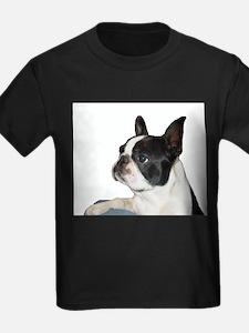 Unique Boston terrier art T