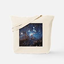 LH_95 Tote Bag
