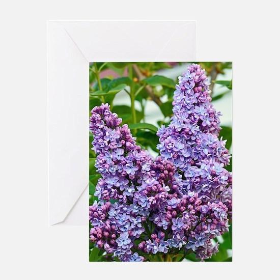 Unique Botanical Greeting Card