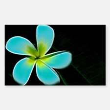 Turquoise Yellow White Flower Decal