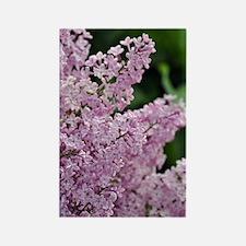 Unique Lilac Rectangle Magnet