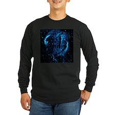 CYGNUS LOOP Long Sleeve T-Shirt