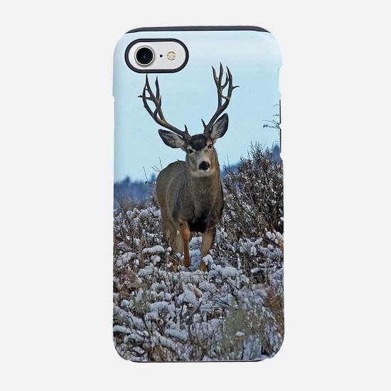 Western Mule Deer buck iPhone 8/7 Tough Case