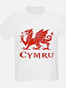 cymru wales welsh cardiff dra T-Shirt