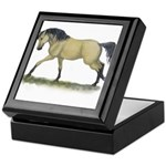 Buckskin Takin off Keepsake Box
