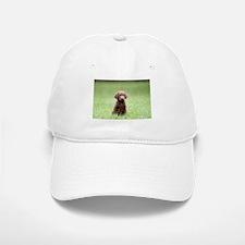 Chesapeake Bay Retriever Puppy Baseball Baseball Baseball Cap