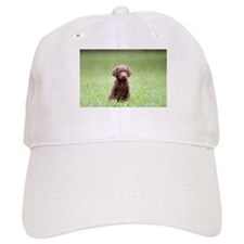 Chesapeake Bay Retriever Puppy Baseball Baseball Cap