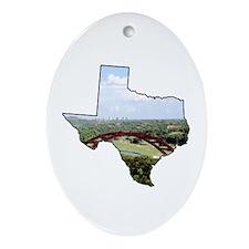 Cute Texas capital Oval Ornament