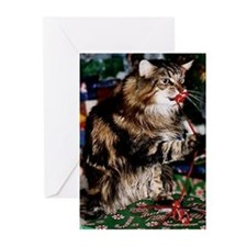 Merry Maine Coon Christmas Greeting Cards (pk Of 1